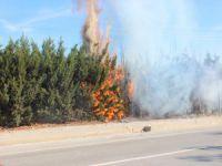 Bursa'da yangın!