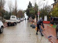 Bursa'da 450 kilo zeytin yola saçıldı