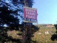 Bursa'da afiş rezaleti!