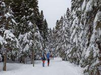 Uludağ'da kar 1.5 metreye ulaştı