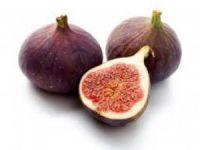 Bursa'da siyah incir tanıtılacak