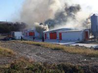 Bursa'da tavuk çiftliği küle döndü