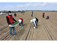 BALKANTÜRKSİAD'dan Tarıma destek çağrısı