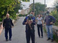 Bursa'da 'tavus kuşu' operasyonu