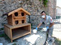Sokak Hayvanları İçin 'Bir Kap Can Suyu'
