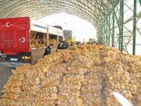 Mudanya Belediyesi patates dağıttı