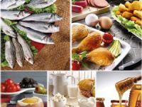 Su ürünleri ve hayvansal mamuller ihracatı