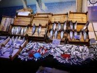 Çarşıda balık bereketi
