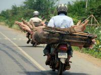 Tezatlar ülkesi Kamboçya