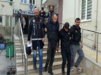 Bursa'da Bonzai operasyonu!
