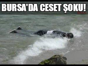 Bursa'da ceset şoku!