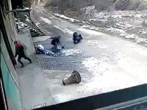 Ordu'da Domuz Köylüye Saldırdı!